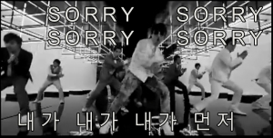 Super Junior Sorry Sorry in Korean
