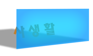 personal life in Korean 사생활